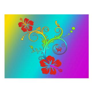 Hibiscus Decor Coloured Postcards