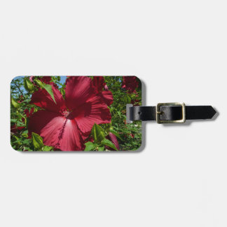 Hibiscus Flower and Blue Sky Tropical Floral Tags For Bags