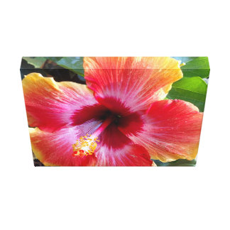 Hibiscus Flower Art Canvas Print