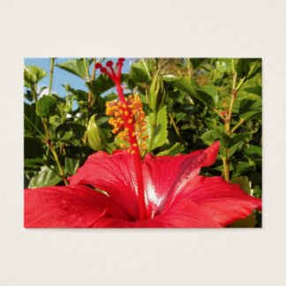 Hibiscus flower business card