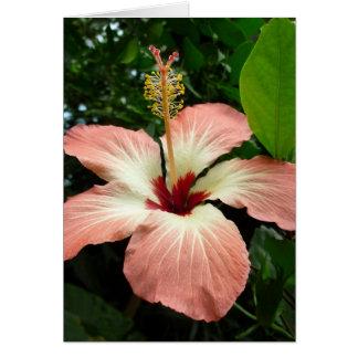 Hibiscus Flower Card