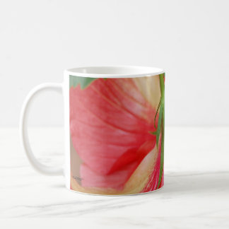 HIbiscus Flower Close-up Coffee Mugs