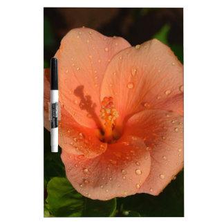 Hibiscus flower dry erase whiteboards