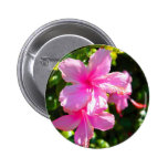 Hibiscus Flower Pink Pins