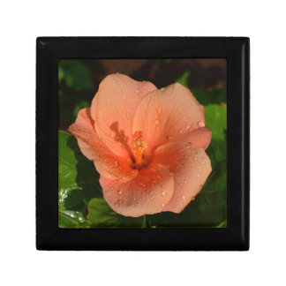 Hibiscus flower small square gift box