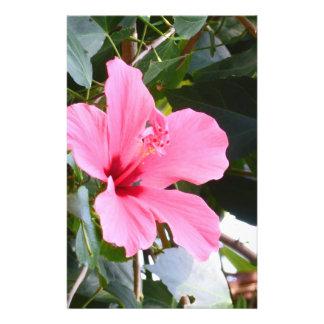Hibiscus Flyer Design