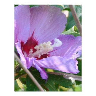 Hibiscus Custom Flyer