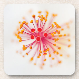 Hibiscus Hard Plastic Coasters (set of 6)