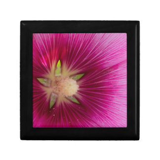 hibiscus in the garden small square gift box