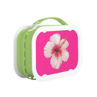 Hibiscus Lunchbox