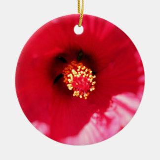 Hibiscus Macro Ornament