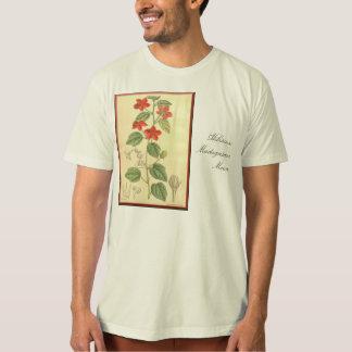 Hibiscus:  Madagascar Moon T Shirts