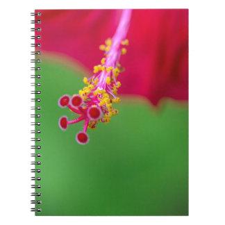hibiscus note books