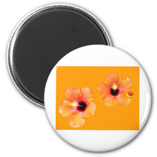 Hibiscus Orange Orange bg The MUSEUM Zazzle Gifts 6 Cm Round Magnet