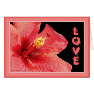 Hibiscus Personalized Greeting Card