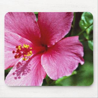 Hibiscus, pink mouse mat