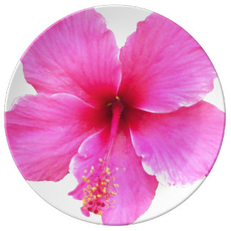 Hibiscus Porcelain Plate