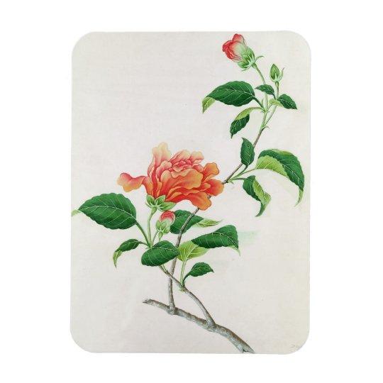 Hibiscus Rectangular Photo Magnet