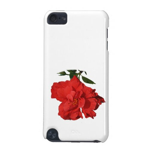 Hibiscus Red Flower Photograph Design iPod Touch 5G Cases