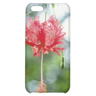 Hibiscus Schizopetalus (Fringed Hibiscus) flowers iPhone 5C Cases