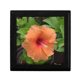 Hibiscus Small Square Gift Box