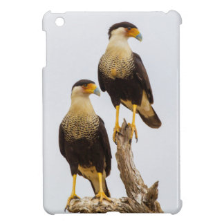 Hidalgo County. Adult Crested Caracara Case For The iPad Mini