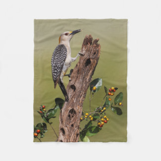 Hidalgo County, Texas. Golden-fronted Woodpecker 1 Fleece Blanket
