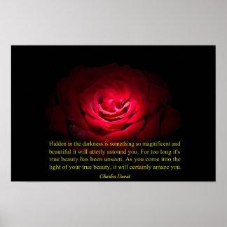 Hidden Beauty Poster