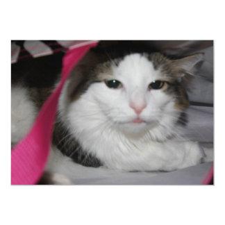 Hidden Kitty 13 Cm X 18 Cm Invitation Card