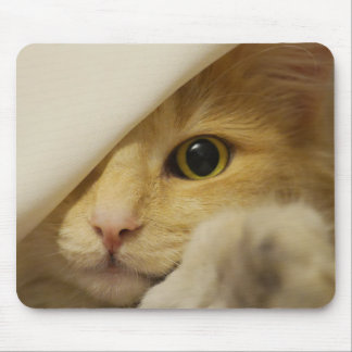 Hide and Seek Cream Colored Cat Mouse Mat