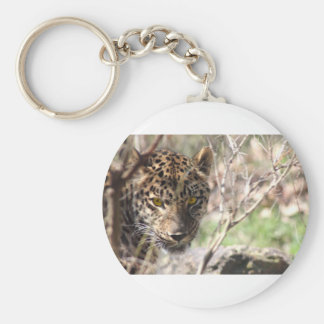 Hiding Leopard Basic Round Button Key Ring