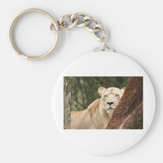 Hiding Lioness Basic Round Button Key Ring