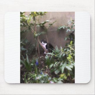 Hiding Mouse Mats