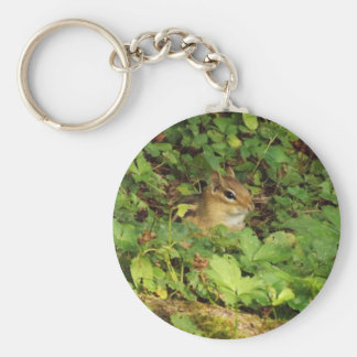 Hiding Place Basic Round Button Key Ring
