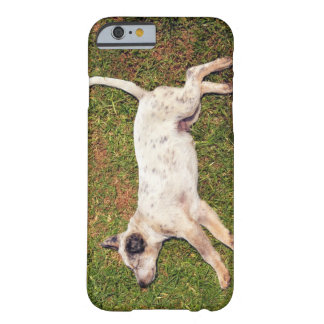 High angle of a dog lying in the grass sleeping. barely there iPhone 6 case