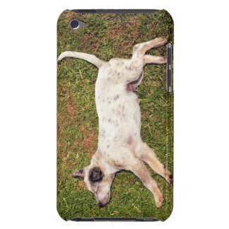 High angle of a dog lying in the grass sleeping. barely there iPod case