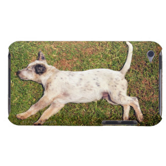 High angle of a dog lying in the grass sleeping. iPod touch cover