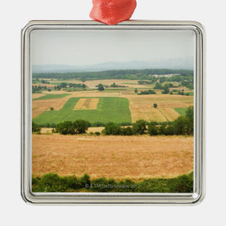 High angle view of a field, Siena Province, Silver-Colored Square Decoration