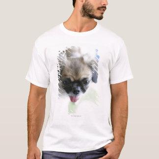 High angle view of an Eskimo Dog T-Shirt