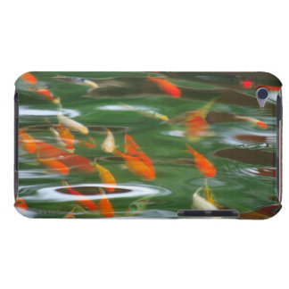 High angle view of koi crap fish in a pond iPod touch cases
