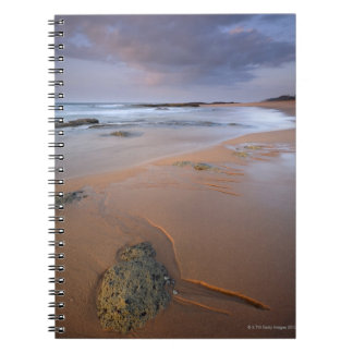 High angle view of shoreline rocks at dawn and notebook
