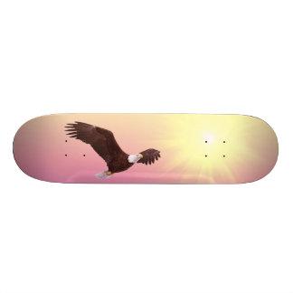 High Flying Eagle Skate Board Decks