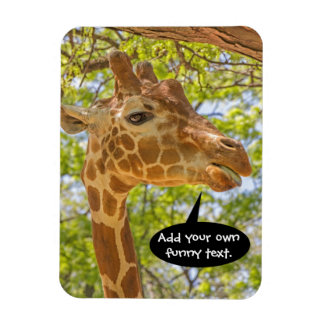 High Giraffe Rectangular Photo Magnet