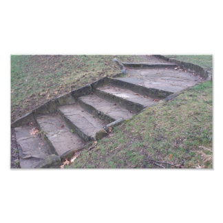High Park Stone Stairs Photographic Print