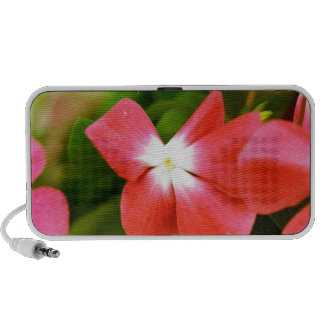 High Quality Floral Photo (Red Flower) PC Speakers