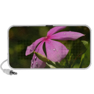 High Quality Floral Photo Mp3 Speaker