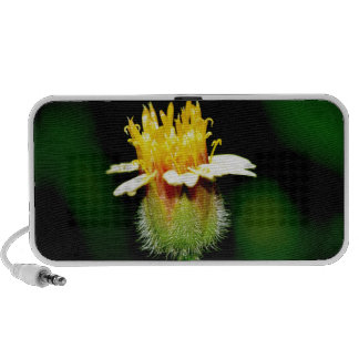 High Quality Floral Photo Speaker