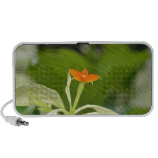 High Quality Floral Photo Mini Speakers