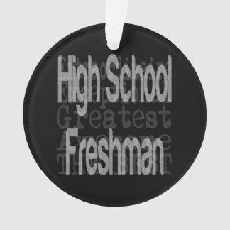 High School Freshman Extraordinaire Ornament