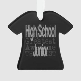 High School Junior Extraordinaire Ornament